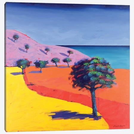 Red Path  Canvas Print #BMN8464} by Paul Powis Canvas Art Print