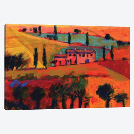 Tuscany, 2008  3-Piece Canvas #BMN8466} by Paul Powis Canvas Art Print