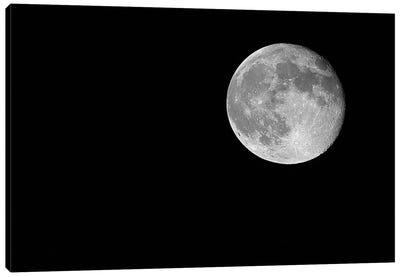 Full Moon, 2017  Canvas Art Print