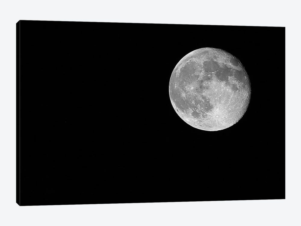 Full Moon, 2017  by SVP Images 1-piece Canvas Art Print