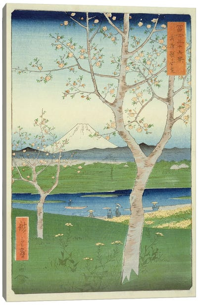 Fuji from Koshigaya, Mushashi Canvas Art Print