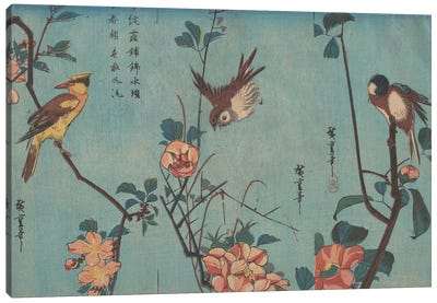 Titmouse and Camellias, Sparrow and Wild Roses and Black-naped Oriole and Cherry Blossoms, c.1833  by Utagawa Hiroshige Canvas Art Print