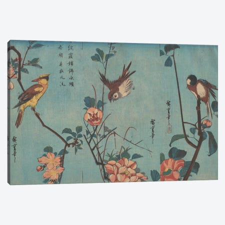 Titmouse and Camellias, Sparrow and Wild Roses and Black-naped Oriole and Cherry Blossoms, c.1833  Canvas Print #BMN8794} by Utagawa Hiroshige Canvas Print