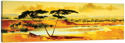 The Jewel of Hlubluwe, South Africa .1996  Canvas Art Print