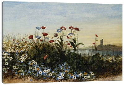 Ferry Carrig Castle, Co. Wexford, Seen Through a Bank of Wild Flowers,  Canvas Art Print