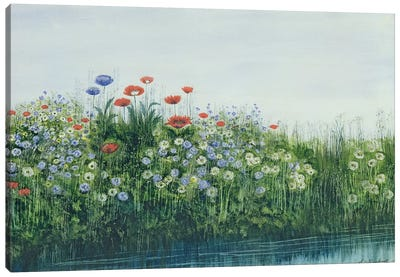 Poppies by a Stream  Canvas Art Print