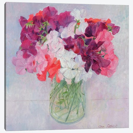 Sweet Peas, 1999  Canvas Print #BMN8814} by Ann Patrick Canvas Art