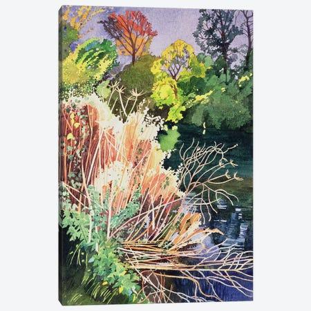 River Avon, Bath  Canvas Print #BMN8821} by Anna Teasdale Canvas Artwork