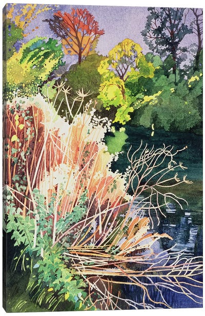 River Avon, Bath  Canvas Art Print