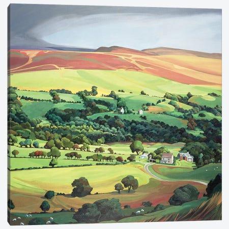 Welsh Valley  Canvas Print #BMN8824} by Anna Teasdale Canvas Print