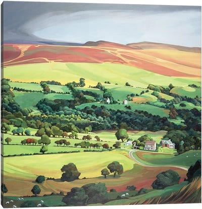 Welsh Valley  Canvas Art Print
