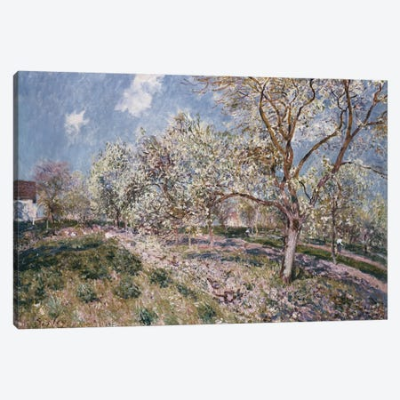 Spring at Veneux, 1880  Canvas Print #BMN8849} by Alfred Sisley Canvas Wall Art