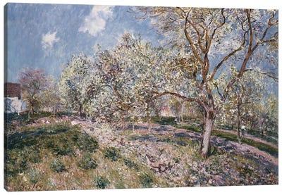 Spring at Veneux, 1880  Canvas Art Print