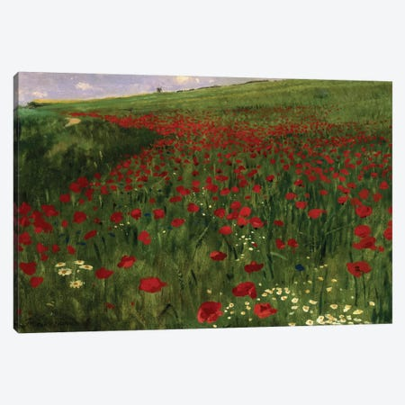 The Poppy Field, 1896  Canvas Print #BMN885} by Pal Szinyei Merse Canvas Print