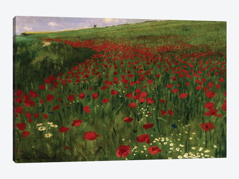 The Poppy Field, 1896  by Pal Szinyei Merse 1-piece Art Print