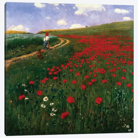 The Poppy Field Canvas Print #BMN888} by Pal Szinyei Merse Canvas Wall Art