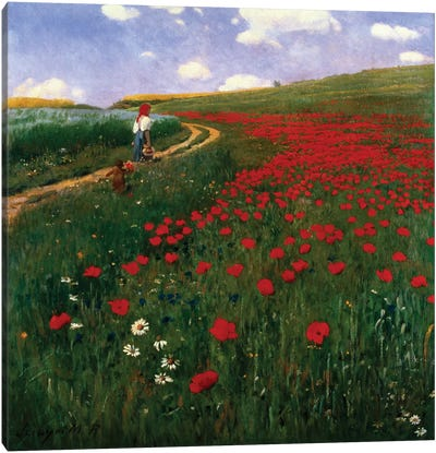 The Poppy Field Canvas Art Print
