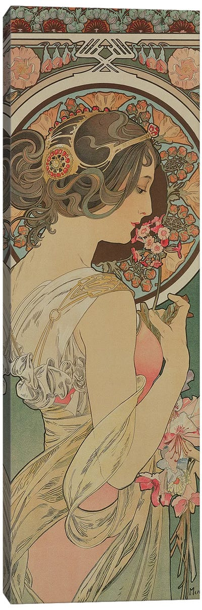 Primrose, 1899  Canvas Art Print