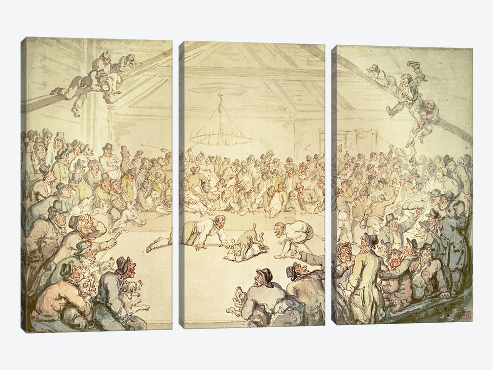 The Dog Fight by Thomas Rowlandson 3-piece Canvas Artwork