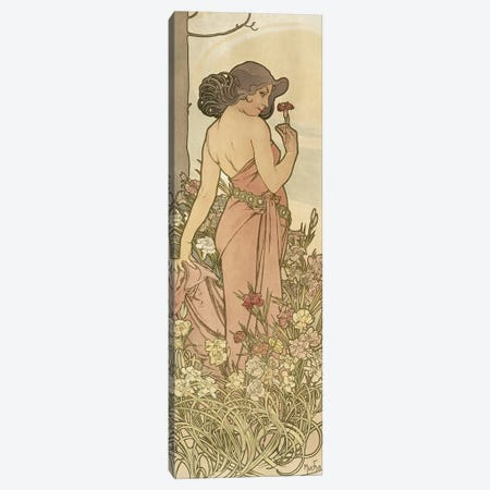The Flowers: Carnation, 1898  Canvas Print #BMN8957} by Alphonse Mucha Canvas Art Print