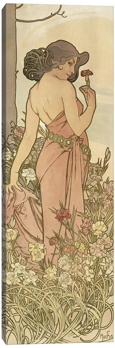 The Flowers: Carnation, 1898  Canvas Art Print