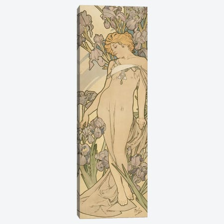 The Flowers: Iris, 1898  Canvas Print #BMN8958} by Alphonse Mucha Canvas Wall Art