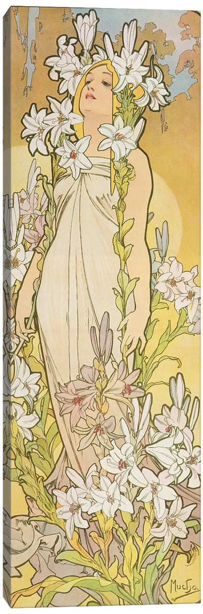 The Flowers: Lily, 1898  Canvas Art Print