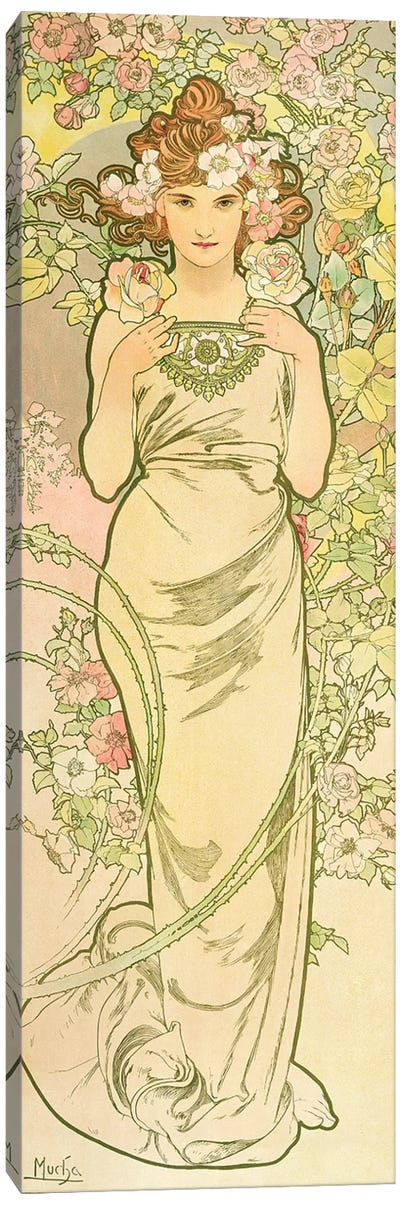 The Flowers: Rose, 1898  Canvas Art Print
