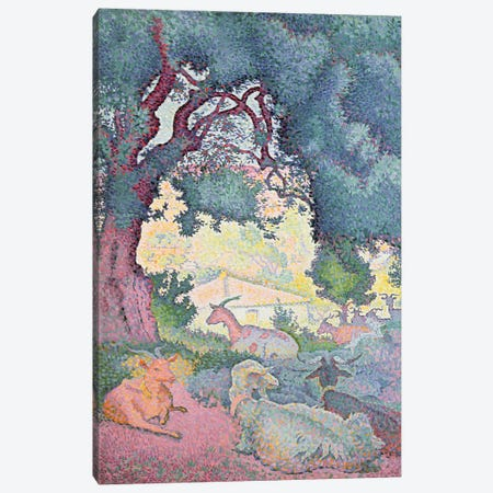 Landscape with Goats, 1895 Canvas Print #BMN898} by Henri-Edmond Cross Canvas Art Print