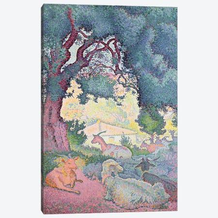 Landscape with Goats, 1895 Canvas Print #BMN898} by Henri-Edmond Cross Canvas Art Print