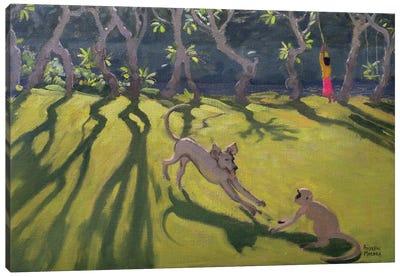 Dog and Monkey, Sri Lanka Canvas Art Print