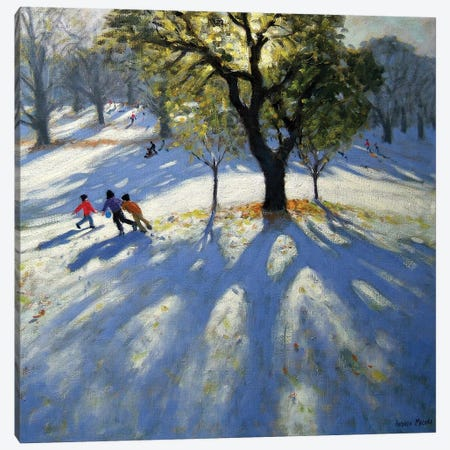 Markeaton Park, Early Snow Canvas Print #BMN9048} by Andrew Macara Canvas Print
