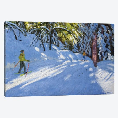 Skiing Through The Woods, La Clusaz Canvas Print #BMN9057} by Andrew Macara Canvas Art Print