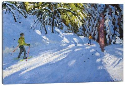 Skiing Through The Woods, La Clusaz Canvas Art Print