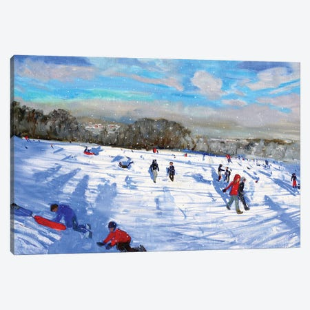 Snow Flurries, Allestree Park, Derby. Canvas Print #BMN9059} by Andrew Macara Canvas Art