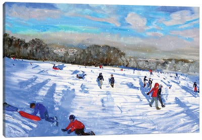 Snow Flurries, Allestree Park, Derby. Canvas Art Print
