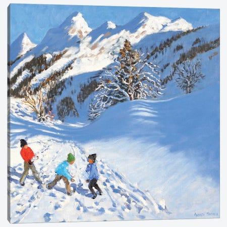 Snowballing, La Clusaz, France  Canvas Print #BMN9060} by Andrew Macara Canvas Print