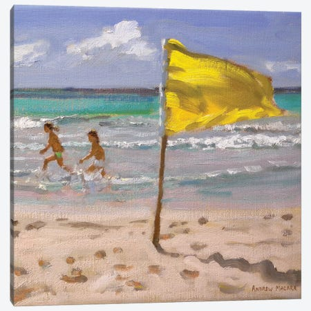 Yellow Flag, Barbado Canvas Print #BMN9070} by Andrew Macara Canvas Artwork
