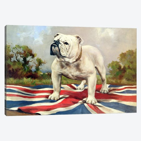 British Bulldog Canvas Print #BMN907} by English School Canvas Art