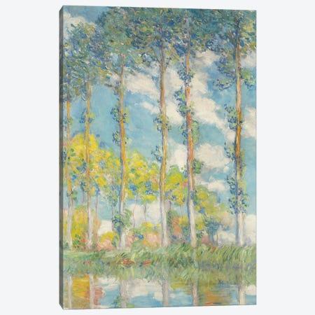 The Poplars; Les Peupliers, 1891 Canvas Print #BMN9148} by Claude Monet Canvas Wall Art