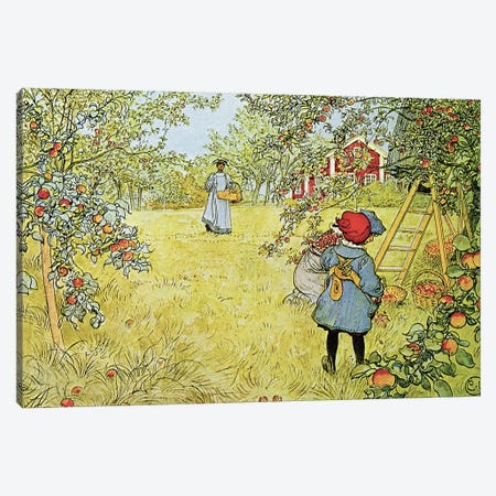 The Apple Harvest Canvas Print #BMN9171} by Carl Larsson Canvas Art Print