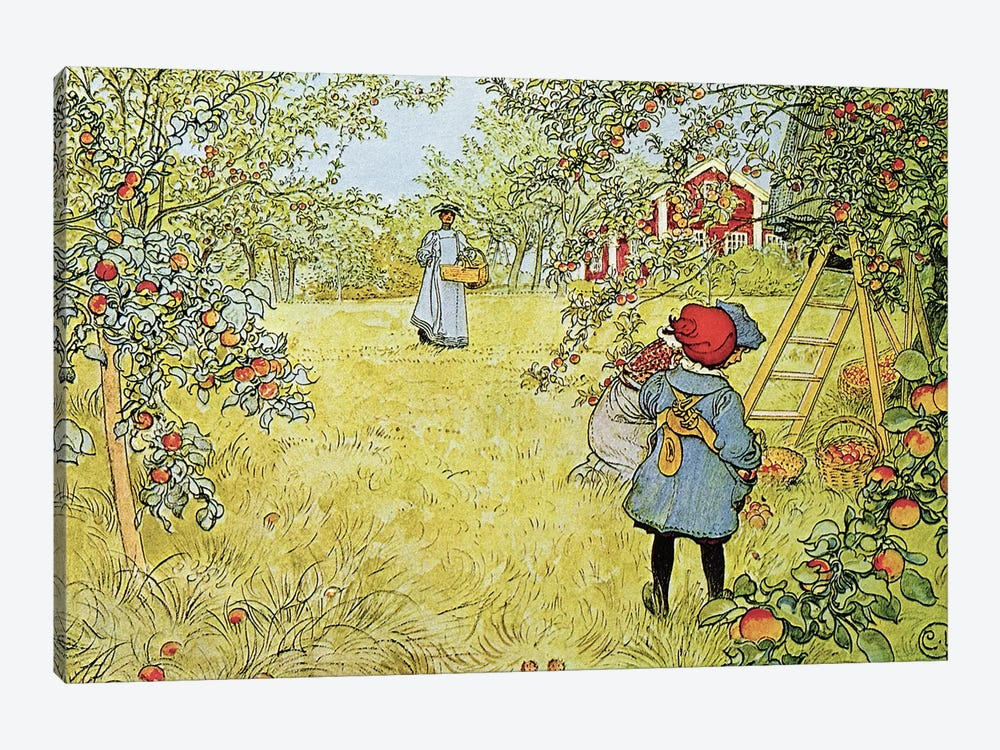 The Apple Harvest by Carl Larsson 1-piece Canvas Art Print