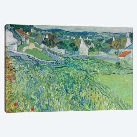 Vineyards at Auvers, June 1890 Canvas Print #BMN9184} by Vincent van Gogh Art Print