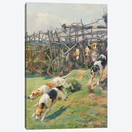 Through the Fence Canvas Print #BMN920} by Arthur Charles Dodd Art Print