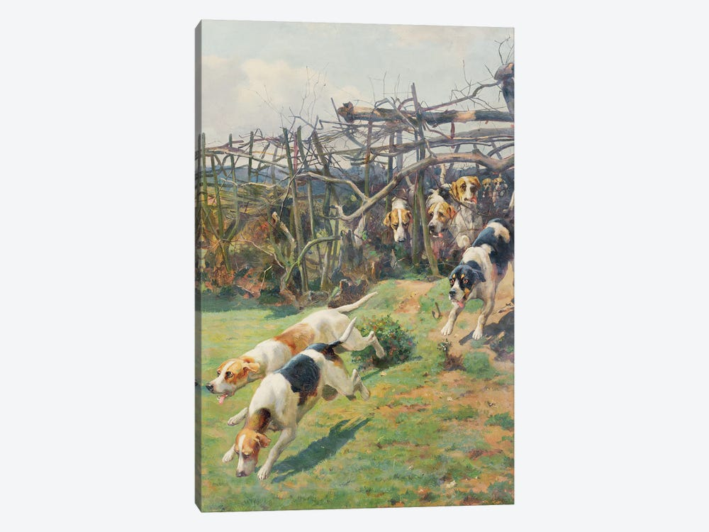 Through the Fence by Arthur Charles Dodd 1-piece Art Print