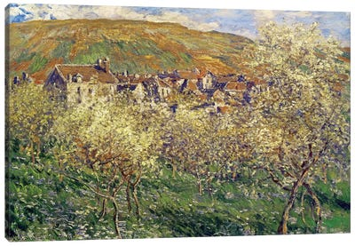 Plum Trees In Blossom, 1879 Canvas Print #BMN923