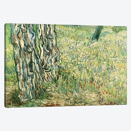Tree trunks in grass, 1890, by Vincent van Gogh Canvas Print #BMN9358} by Vincent van Gogh Canvas Art Print