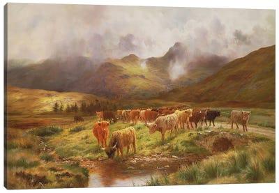 A Highland Drove at Strathfillan, Perthshire Canvas Art Print