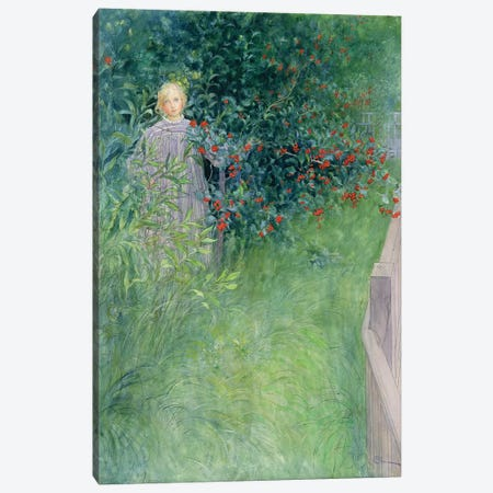In the Hawthorn Hedge Canvas Print #BMN9400} by Carl Larsson Art Print