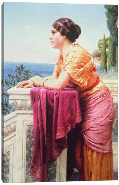 The Belvedere Canvas Art Print